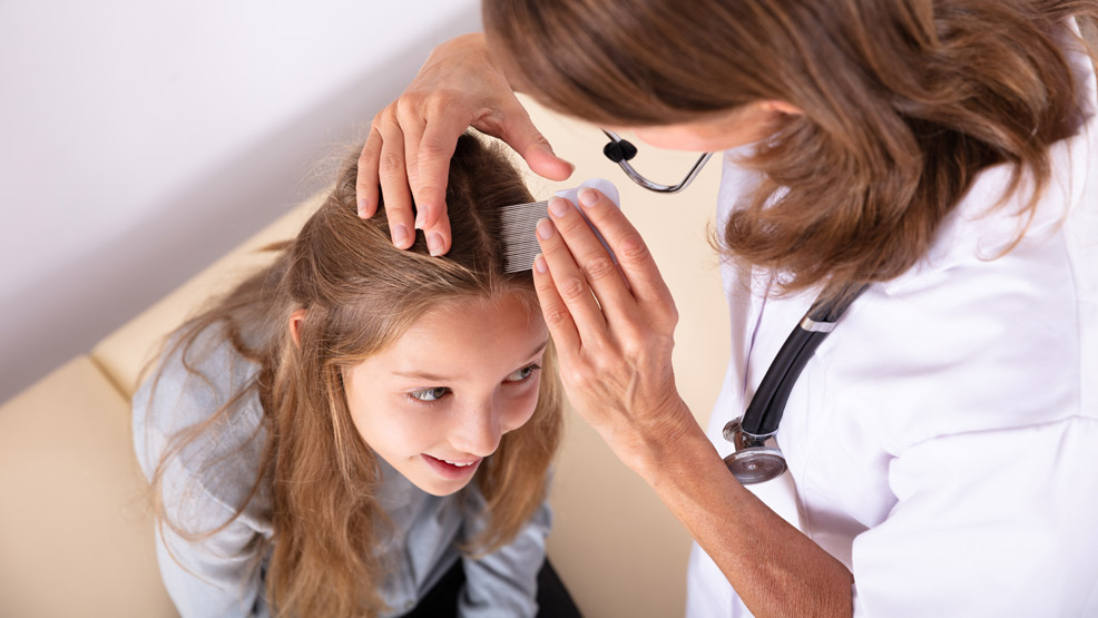 Wszawica w naszych szkołach. Jak leczyć, zapobiegać, unikać? - Zdjęcie główne