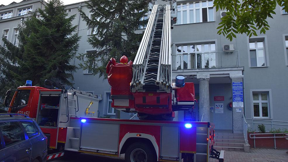 """W szpitalu w Gostyniu usuwano """"niepożądanych lokatorów"""". Potrzebna była pomoc strażaków - Zdjęcie główne"""