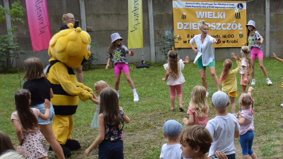 Wielki Dzień Pszczół w Krobi. Robili hotele dla owadów - Zdjęcie główne
