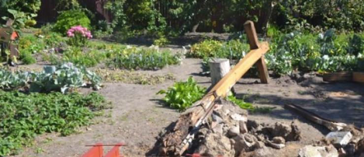 Po śmiercionośnej chorobie pozostały krzyże - Zdjęcie główne