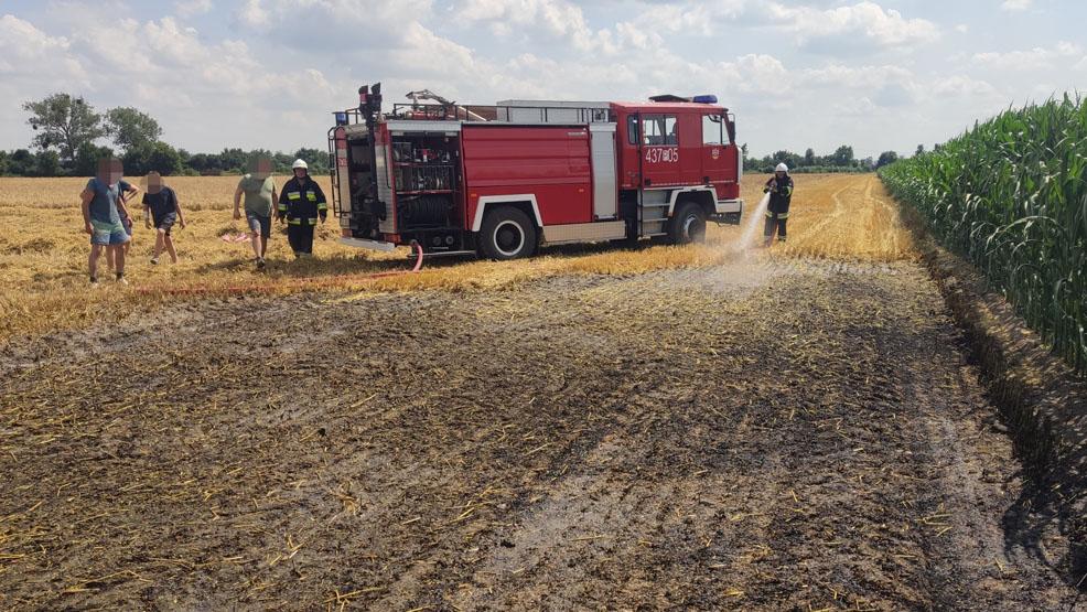 Alarm w gminie Borek Wlkp. Zapaliło się zboże na pniu - Zdjęcie główne