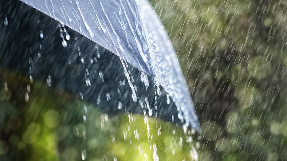 Zimno i deszczowo w powiecie gostyńskim. Ostrzeżenia przed podtopieniami. Pierwsze oznaki jesieni? - Zdjęcie główne