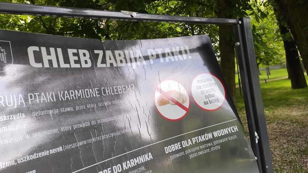 Jarocin. Wandale nie próżnują. Zniszczono tablicę w parku Radolińskich - Zdjęcie główne