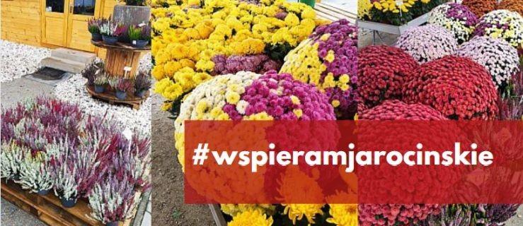 Kupujcie kwiaty, wiązanki. Nie zostawiajmy producentów z towarem! WAŻNA AKCJA - Zdjęcie główne