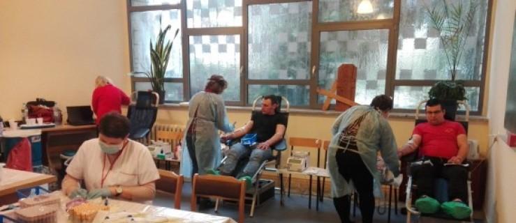 Oddaj krew w niedzielę w kościele. Pomóż jarociniance - Zdjęcie główne