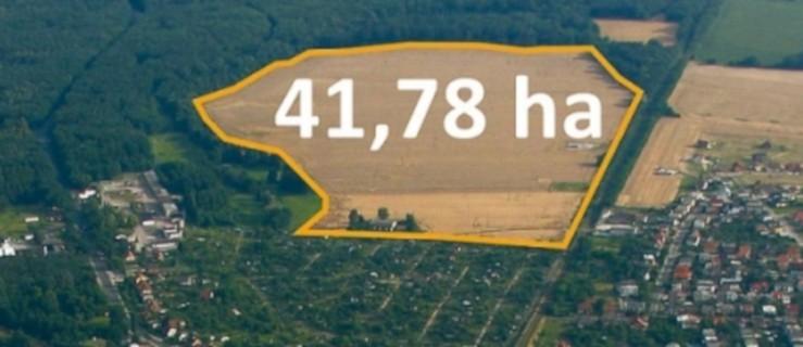 Są chętni na ponad 40 hektarów gminnej ziemi [AKTUALIZACJA] - Zdjęcie główne