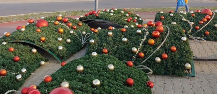 Jarocin. Choinka bożonarodzeniowa 2020. Wiemy, gdzie stanie choinka w tym roku [SONDA] - Zdjęcie główne