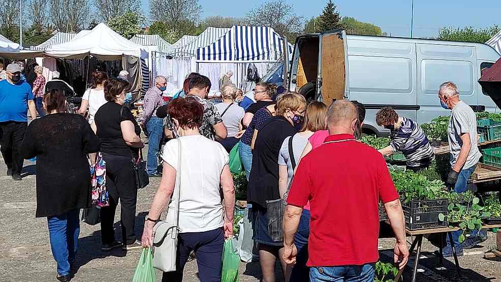 Tłumy kupujących na targowisku w Jarocinie. Już jutro zaczynają się zimni ogrodnicy. Zobacz ceny   - Zdjęcie główne