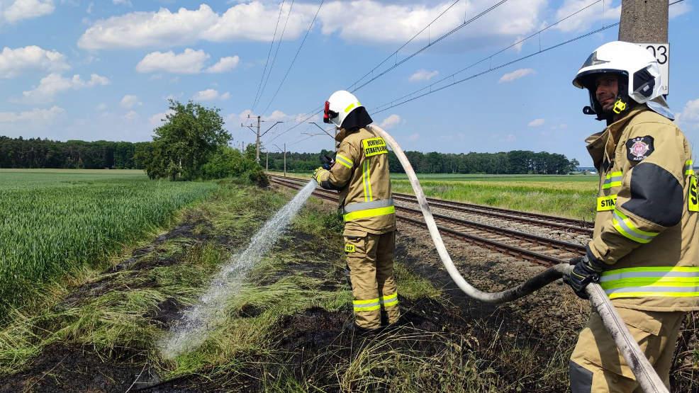 Pożar trawy i plama oleju na drodze [GALERIA] - Zdjęcie główne