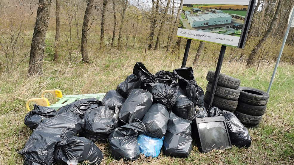 Kolejna akcja ekologiczna: Sprzątają dla Polski - Zdjęcie główne