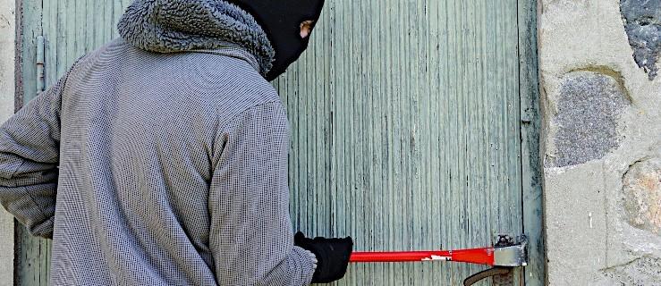 Jarociniacy kradli w sąsiednim powiecie   - Zdjęcie główne
