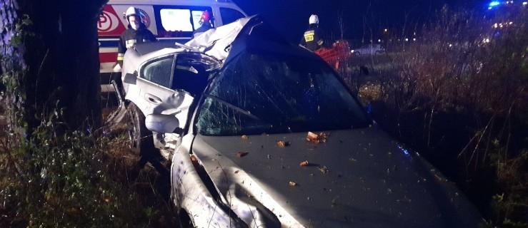 BMW uderzyło bokiem w drzewo. Kierowca w szpitalu  - Zdjęcie główne