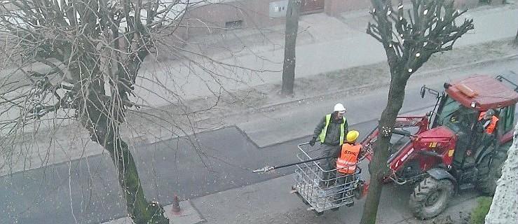 """Wybrali dwóch """"ogrodników"""" do miejskiej zieleni  - Zdjęcie główne"""