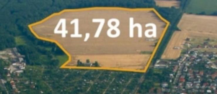 Na co przeznaczyć ponad 40-hektarów gminnej ziemi - co wynika z konsultacji?  - Zdjęcie główne