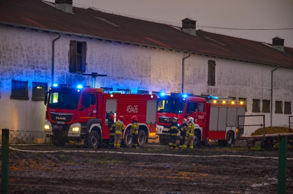 Jarocin.Pożar stogu wybuchł nad ranem  - Zdjęcie główne