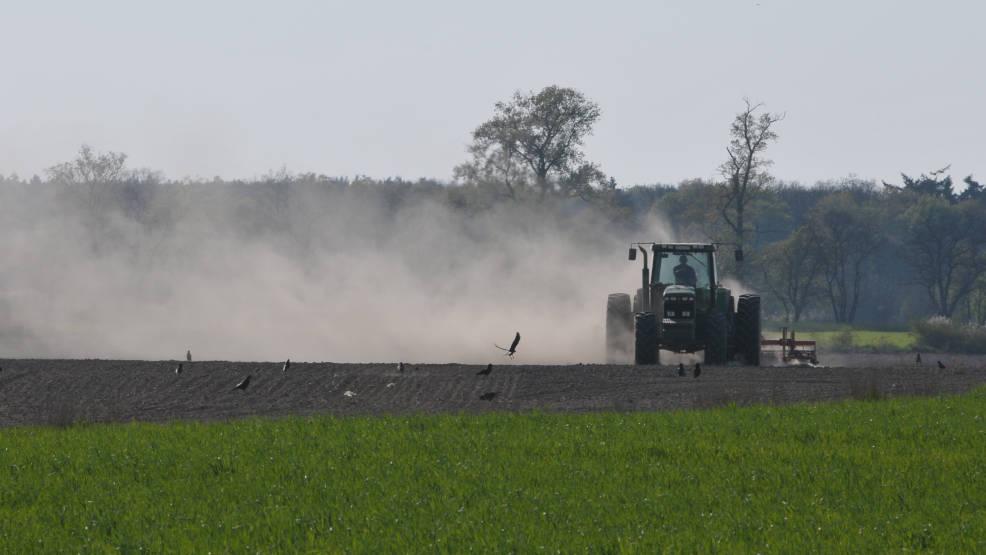 Jarocin. Rolnicy mogą składać zapotrzebowanie na zakup gruntów rolnych - Zdjęcie główne