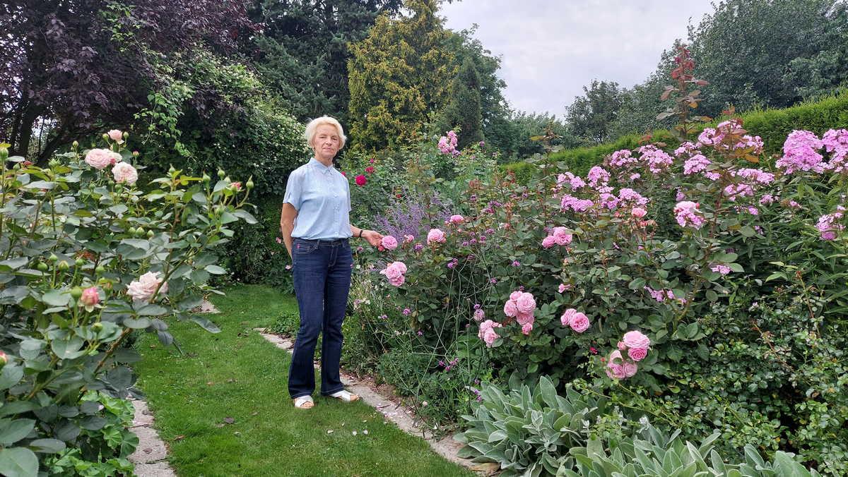 Ewa Kosowicz - Nelke ma niesamowity ogród. Chce założyć fundację i pomagać pielęgniarkom  - Zdjęcie główne