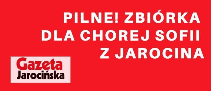 PILNE. Potrzebna pomoc dla chorej Sofii. Organizujemy zbiórkę. Prosimy o wsparcie   - Zdjęcie główne