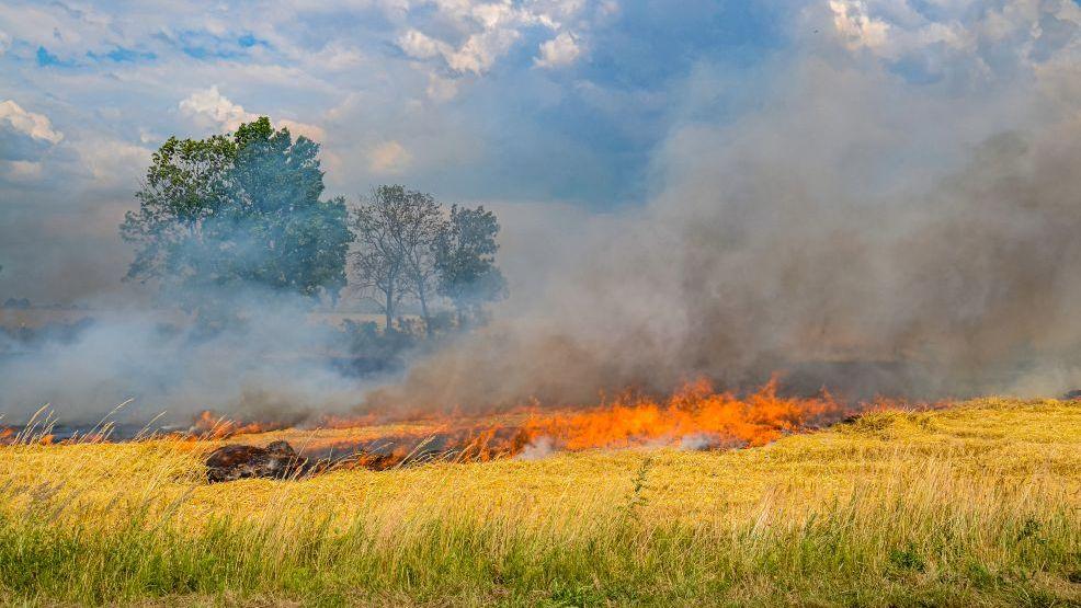 Pożary zboża w gminach powiatu jarocińskiego - Zdjęcie główne