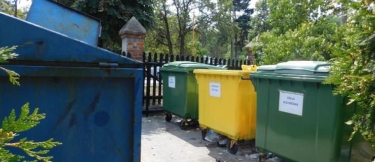 Śmieci z cmentarza też trzeba segregować. Jak to zrobić? [GRAFIKA] - Zdjęcie główne