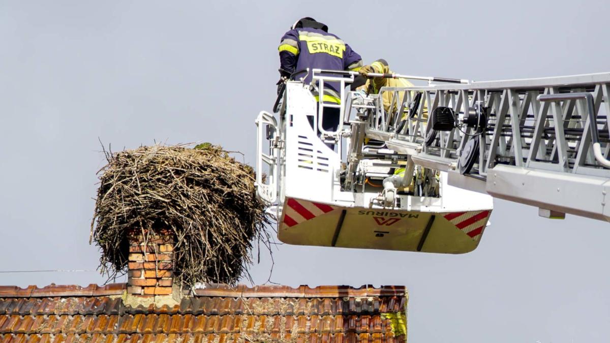 Jarocin. Strażacy po raz kolejny zapobiegli nieszczęściu  - Zdjęcie główne