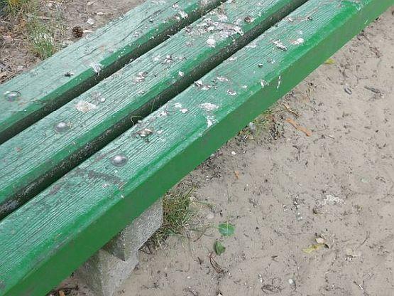 Jarocin. Bałagan na placu zabaw znajdującym się na osiedlu Tadeusza Kościuszki - Zdjęcie główne
