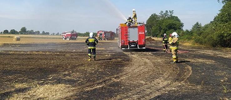 Najpierw podpalał, a potem wzywał strażaków  - Zdjęcie główne