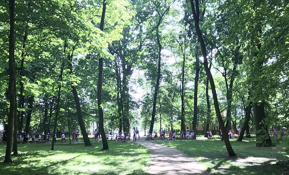 Przedszkolaki kibicowały biało - czerwonym od rana w parku. [WIDEO] - Zdjęcie główne