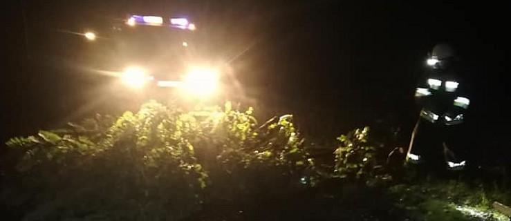 Silny wiatr powalił kilka drzew   - Zdjęcie główne
