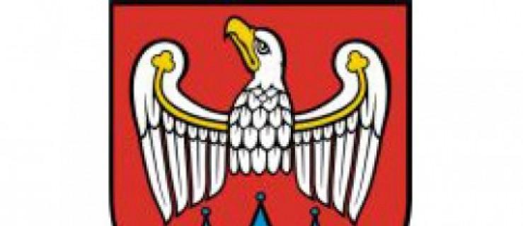W Stęgoszy znaleziono tablicę rejestracyjną - Zdjęcie główne