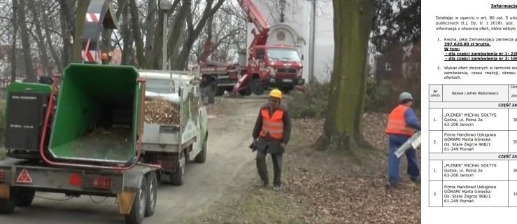 Przetarg na miejską zieleń. Miejscowy zakład sporo droższy od firmy z Poznania - Zdjęcie główne