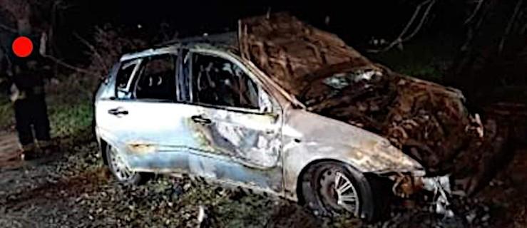 Auto uderzyło w drzewo. Stanęło w płomieniach - Zdjęcie główne