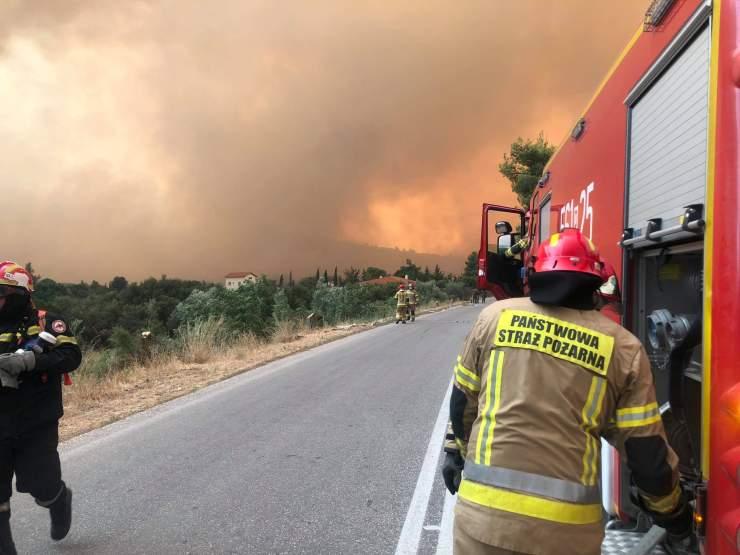 Pożary Grecja 2021. Jarociński strażak bronił miasta Vilia. To było piekło [WIDEO] [ZDJĘCIA] - Zdjęcie główne