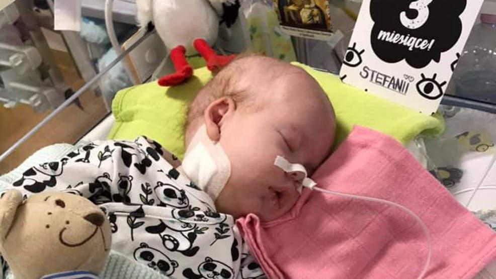 Stefania od trzech miesięcy walczy o życie. Pomoc nadal jest potrzebna - Zdjęcie główne