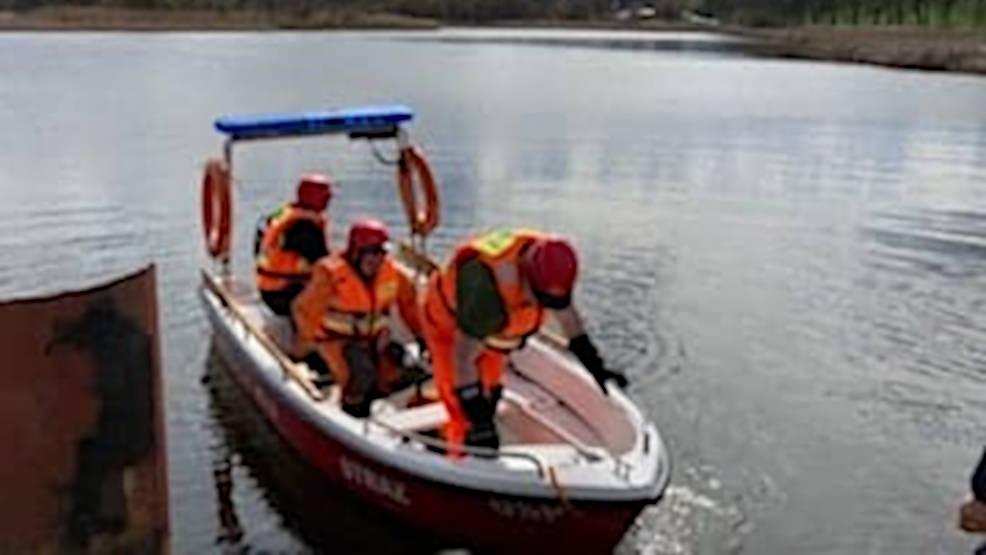 Strażacy próbowali złapać rannego łabędzia  - Zdjęcie główne