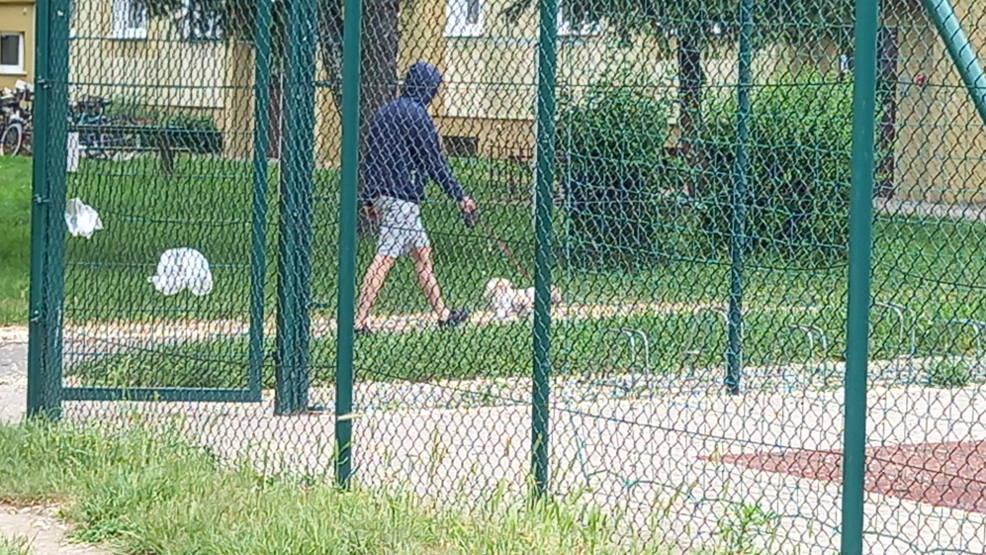 Spółdzielnia mieszkaniowa w Jarocinie zwalcza chwasty. Lokatorzy: Psy chorują - Zdjęcie główne