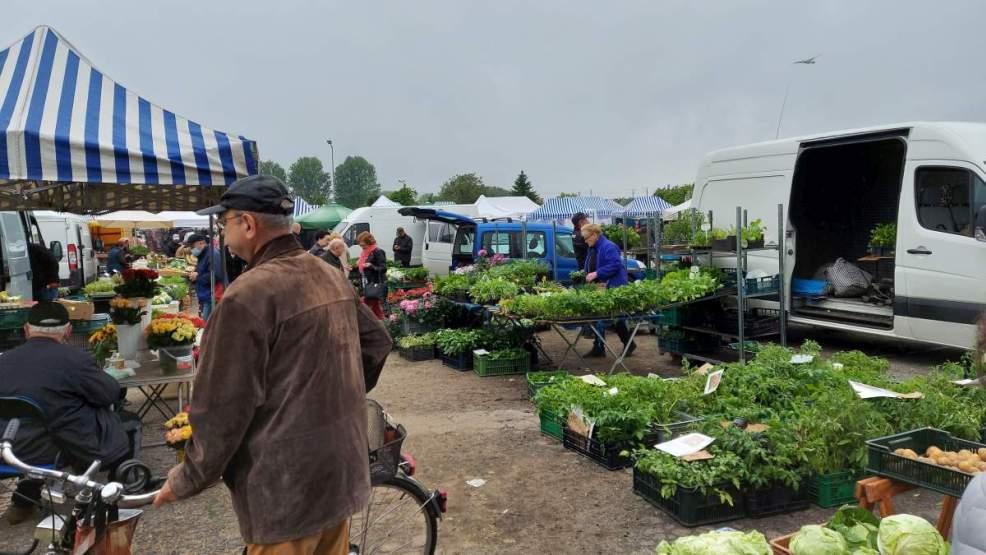 Ceny warzyw w Jarocinie? Niektóre ceny mogą przyprawić o zawrót głowy  [FOTO] - Zdjęcie główne