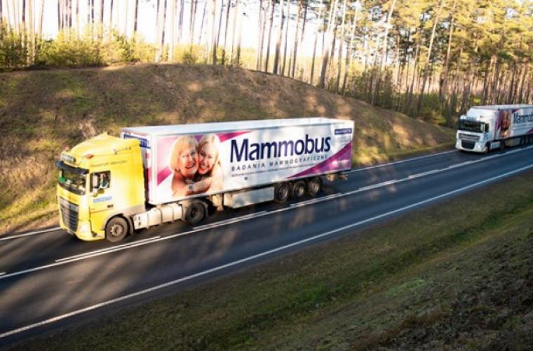 Bezpłatna mammografia w Krotoszynie. Sprawdź kiedy i gdzie! - Zdjęcie główne
