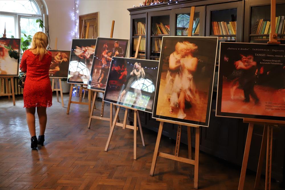 Wielokulturowy Festiwal Tanga w Łagiewnikach [ZDJĘCIA] - Zdjęcie główne