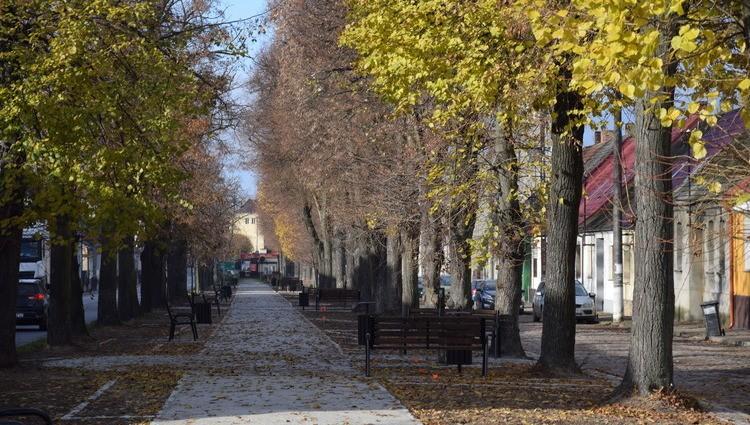 Ścieżka pieszo - rowerowa w Sulmierzycach - Zdjęcie główne