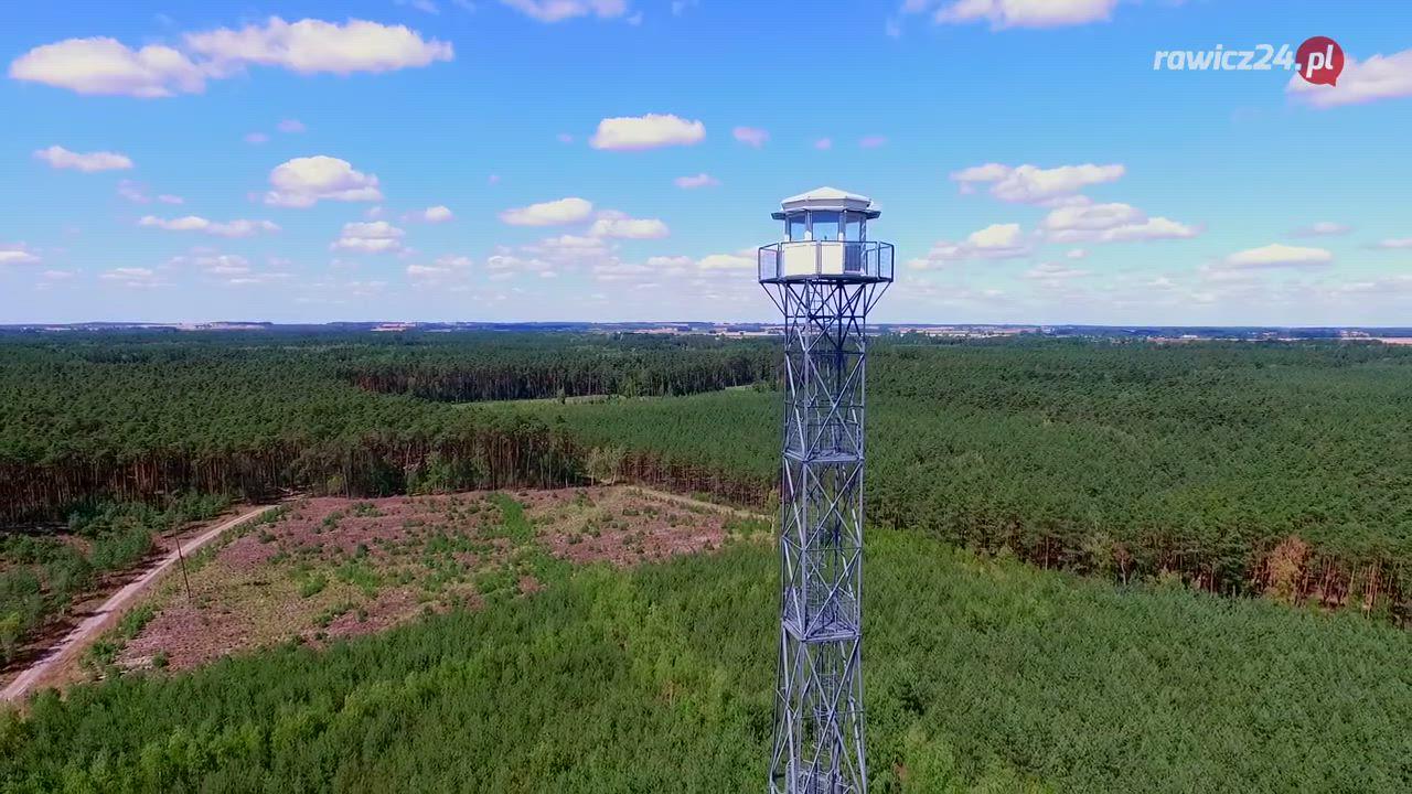 Wysokie zagrożenie pożarowe w lasach na terenie Wielkopolski - Zdjęcie główne
