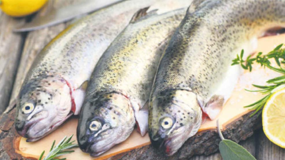 Jak kupić dobrą rybę i jakich ryb unikać - Zdjęcie główne