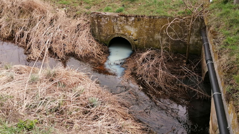 Ktoś wylewa ścieki do Pijawki? Obok ujęcie wody - Zdjęcie główne