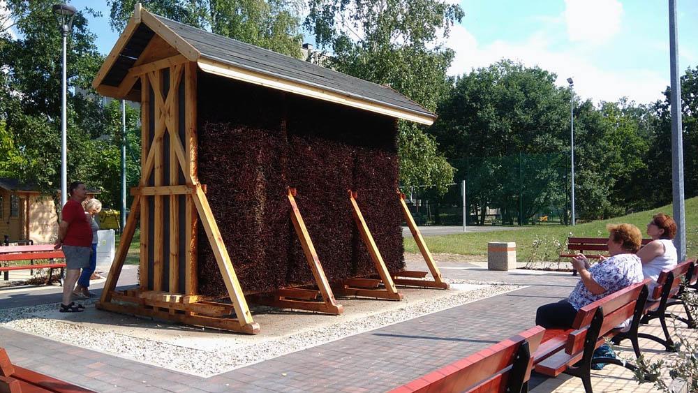 Radny chce, by w Rawiczu powstała tężnia solankowa - Zdjęcie główne