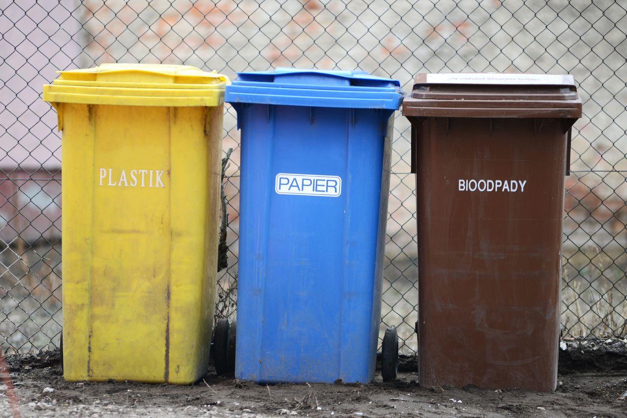 Mieszkańcy źle segregują śmieci. To może doprowadzić do kolejnych podwyżek - Zdjęcie główne