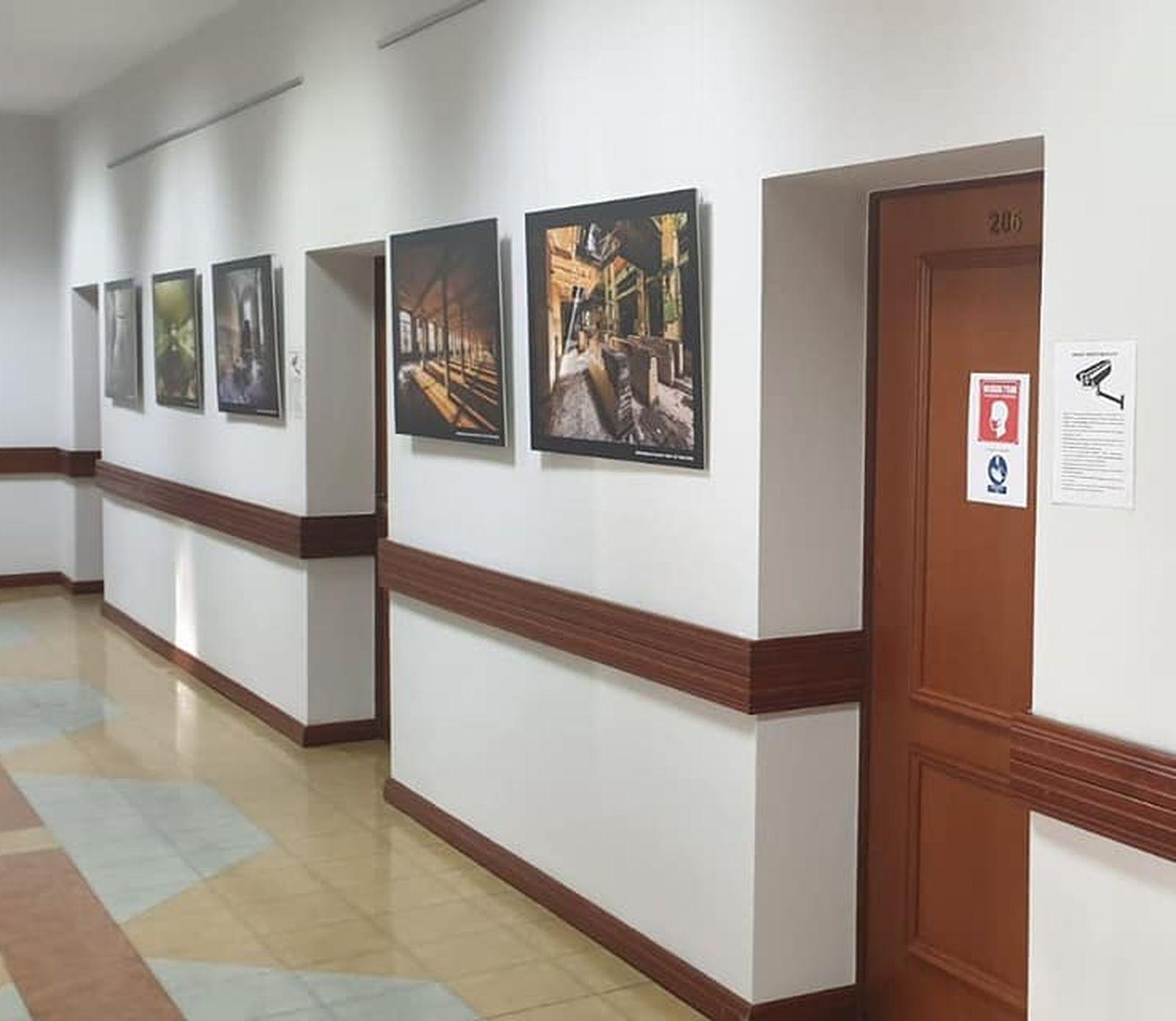 Pleszew. Burmistrz zrobił w urzędzie… galerię sztuki. Urzędowe korytarze są dziś nie do poznania - Zdjęcie główne
