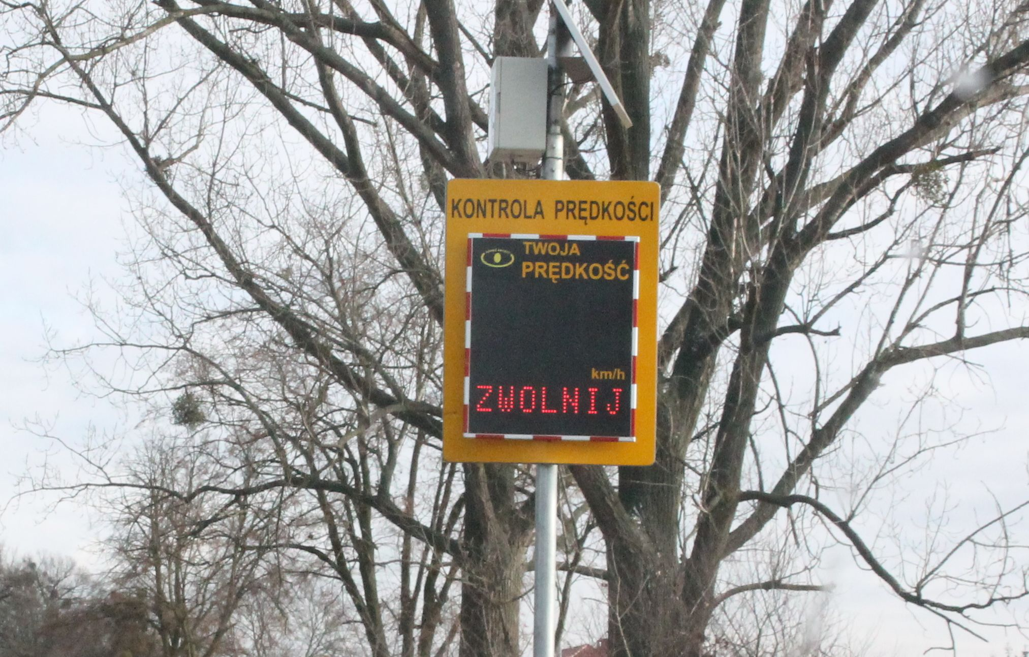 Gmina Pleszew. Zmiany na przejściu dla pieszych. W tym miejscu stanie radarowy wyświetlacz prędkości - Zdjęcie główne