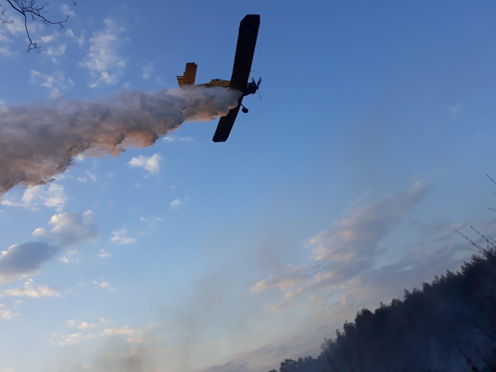 Powiat pleszewski. Czermin. Samolot gaśniczy w akcji. Spłonęły dwa hektary - Zdjęcie główne