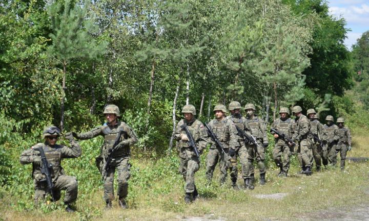Pleszew. Przyjadą do nas Wojska Obrony Terytorialnej - Zdjęcie główne
