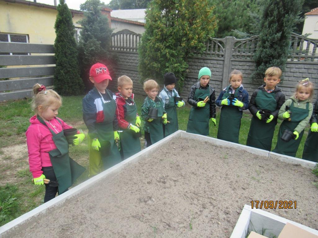 Pleszew. W przedszkolach ruszyły ekologiczne warsztaty - Zdjęcie główne
